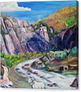 Wildlife On The Colorado River Canvas Print