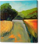 Wildwood Road Canvas Print