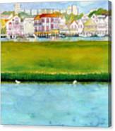 Wildwood Wetlands Canvas Print