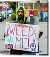 Will Work 4 Weed Canvas Print