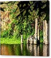 Willamette River Reflections 3783 Canvas Print