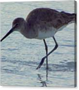 Willet In The Surf Canvas Print
