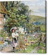 William Stephen Coleman Canvas Print
