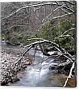 Williams River In Winter Canvas Print