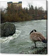 Willie Willey Rock - Riverfront Park - Spokane Canvas Print