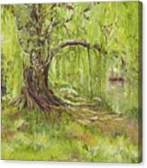 Willow Swing Canvas Print