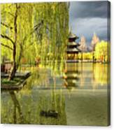 Willow Tree In Liiang China II Canvas Print