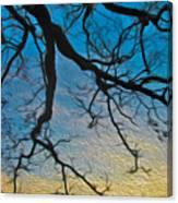 Willowbrush Canvas Print