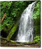 Wilson River Hwy Waterfall Canvas Print