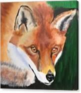 Wily Fox Canvas Print