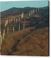 Wind Generators-signed-#0037 Canvas Print