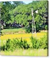 wind mill N weeds Canvas Print