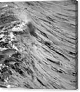 Wind Swept Canvas Print