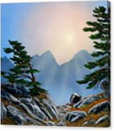 Windblown Pines Canvas Print