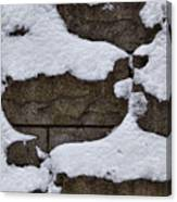 Windblown Snow Canvas Print