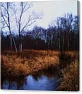 Winding Creek 2 Canvas Print