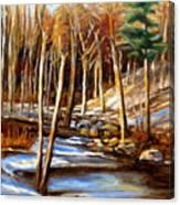 Winding Stream Canvas Print