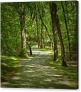 Winding Trails At Bur Mil Park  Canvas Print