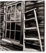 Window And Ladder Canvas Print