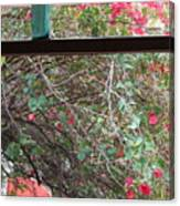 Window Bottle Canvas Print