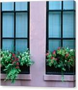 Window Boxes Canvas Print