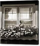 Window Flower Box 2 Canvas Print