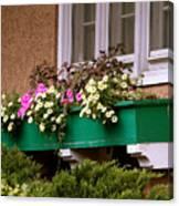 Window Flower Box Canvas Print