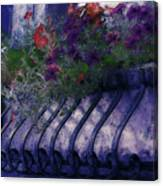 Window Flowerbox Canvas Print