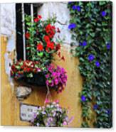 Window Garden In Arles France Canvas Print