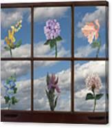 Window Garden Canvas Print
