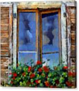 Window Shutters And Flowers IIi Canvas Print