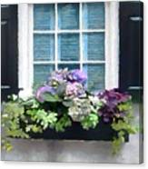 Window Shutters And Flowers Vi Canvas Print