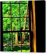 Window To My World Canvas Print