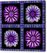 Windowpanes Brimming With  Moonburst Stripes Of Flowers - Scene 6 Canvas Print