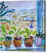 Windowsill Canvas Print