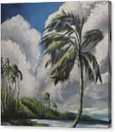 Winds Canvas Print