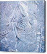 Iced Windshield  Canvas Print