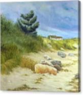 Windswept Sands Canvas Print