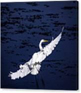 Windy Flight Canvas Print