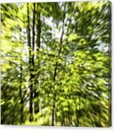 Windy Trees Canvas Print
