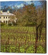 Wine Country California 1 Canvas Print