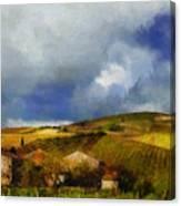 Wine Vineyard Canvas Print
