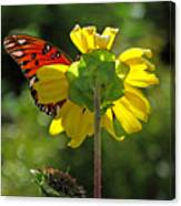 Wing Flower Canvas Print