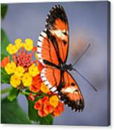 Winged Tiger Canvas Print