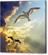 Wings Against The Storm Canvas Print