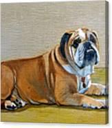 Winston Canvas Print
