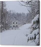 Winter 2010 Canvas Print
