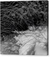 Winter Abstract Black And White Canvas Print