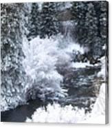 Winter Along The Creek Canvas Print