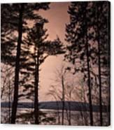 Winter At Nepaug Canvas Print